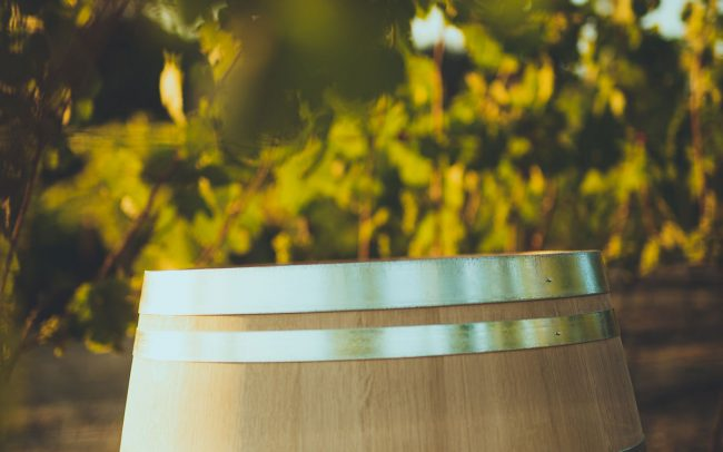Barrel in the vineyard